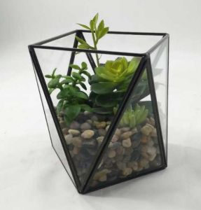 China Artificial High Class Decoration Terrarium Potted Plants
