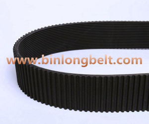Timing +Poly V Belt pictures & photos