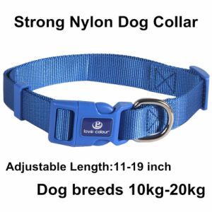 New Custom Fashion Pet Collar in Nylon Material