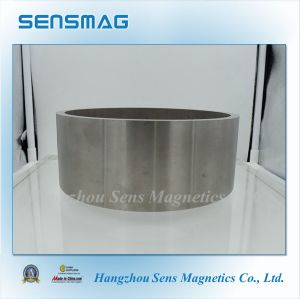 Customized Permanent AlNiCo Ring Magnet with RoHS for Motor pictures & photos