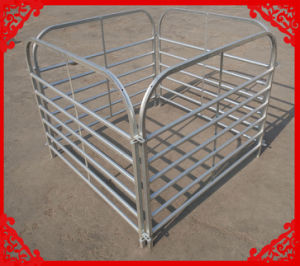 HDG Steel Sheep Hurdle Made in China pictures & photos