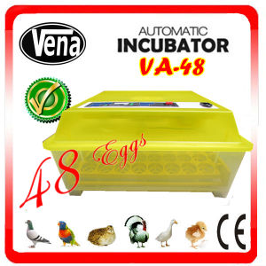 Cute Patented Heart-Smart High Hatching Rate Mini Duck Egg Incubator (48 eggs) pictures & photos