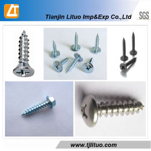 DIN7504K Hex Head Self Tapping Screw pictures & photos