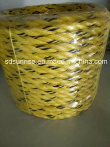 PP Split Film Rope Yellow with Black pictures & photos