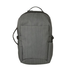 Backpack for 15.6 Inch Laptop with High Quality (SB6462C) pictures & photos