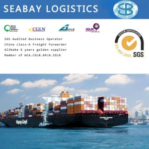Shipping Company/Ocean Freight/Container Shipping/Shipping