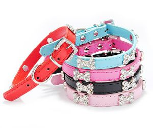 Pet Dog Cat Puppy Fashion Collar (cl3004)