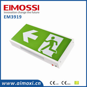 Europe Standard Exit LED Emergency Light Exit Sign