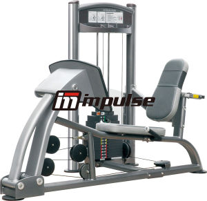 Let Press Fitness Strength Gym (IT9010)
