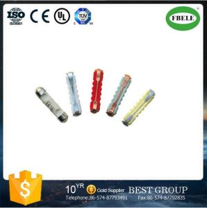 Ceramic 5.8X23 Size Glass Tube Fuses pictures & photos