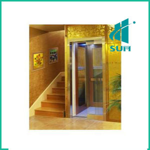 Luxury Home Elevator with Competitive Price Sum-Elevator pictures & photos