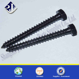 DIN571 Standard Fastener Wood Screw pictures & photos