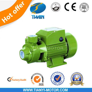 Qb 0.5HP Electric Water Pump Agriculture Pump for Clean Water