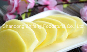 China Shandong Fresh Potato pictures & photos