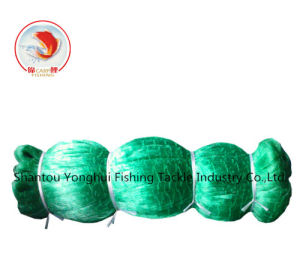 Light Green Nylon Mono Fishing Net pictures & photos