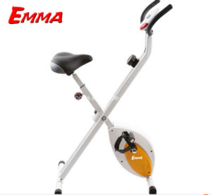 Folded Indoor Belt Drive Bike (X1000W) pictures & photos