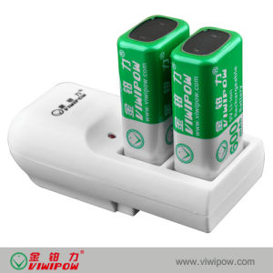 Ni-CD Battery Charger with Separate Charging Mode (VIP-C002)