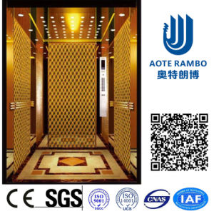 AC-Vvvf Drive Home Lift/Elevator with German Technology (RLS-211)