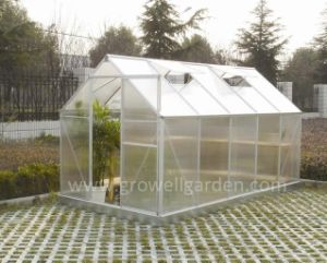 6′ X 7′ New Development Promotion Quality Greenhouse (D607) pictures & photos