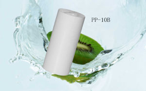 PP-10B 5 Micron Water Filter Sediment Filtration Replacement Cartridges pictures & photos