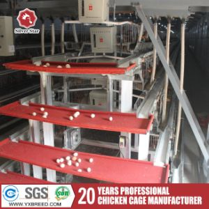 a Type Farm Automatic Breeder Cages for Layer Chiken House pictures & photos