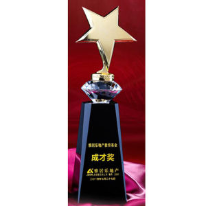 Metal Star Trophy Award with Diamond Crystal pictures & photos