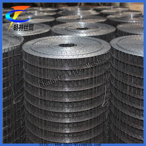 Hot Sales Black Iron Wire Welded Wire Mesh Factory pictures & photos