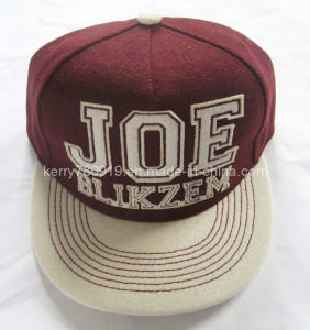 Fashional Embroidered Snapback Caps/Fitted Cap (DH-LH73020)
