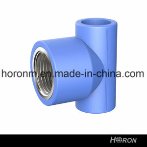 Water Pipe-PPR Fitting-PPR Famale Thread Tee-Blue PPR Famale Thread Tee-PPR Thread Tee-Tee