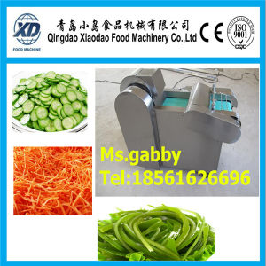 Vegetable Fruit Cutter /Vegetable Slicer pictures & photos