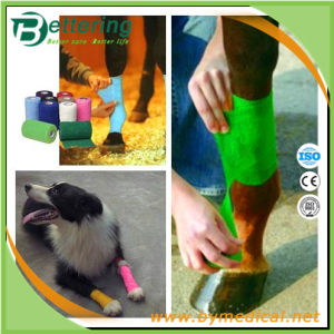 Non Woven Cohesive Equine Bandage for Hoof Wrap pictures & photos