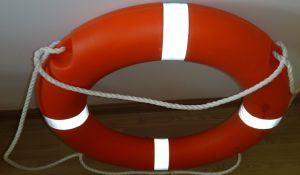 5556-1 Life Buoy pictures & photos