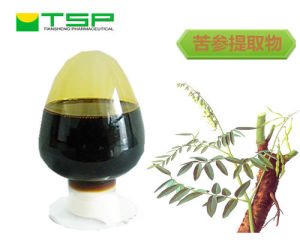 GMP Factory Supply Sophora Extract Liquid