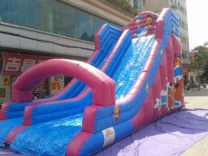 Inflatable Big Adult and Kids High Peak Slide for Sale pictures & photos