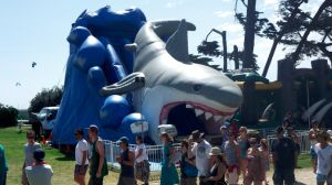 Inflatable Shark Slide at The Festival pictures & photos