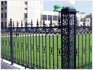 Wrought Iron Fence for Garden (DJ-072)