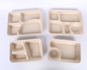 Disposable Sugarcane Pulp Lunch Box Biodegradable Wheat Straw Bagasse Plate Tray Food Container