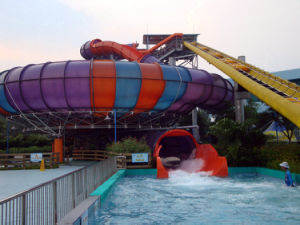 Super Bowl Fiberglass Water Slide for Wate Park pictures & photos