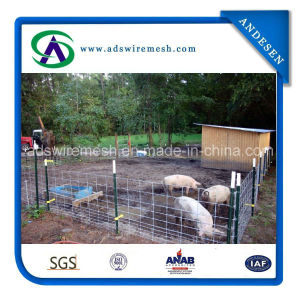 Economy Hog Panels/Sheep Panels pictures & photos