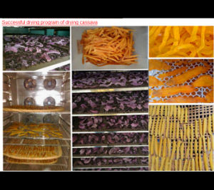 Hot Selling Cassava Chips Mesh Belt Dryer Machine  pictures & photos