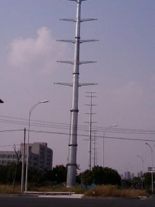 Export Good Quantily Single Tubur Tower pictures & photos