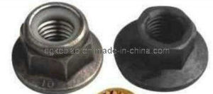 Custom Special Stainless Steel Flange Nut (KB-026)