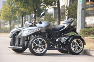 250cc ATV EEC Approved pictures & photos