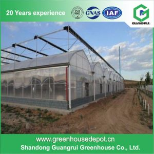 Good Price Garden Polycarbonate PC Hollow and Solid Sheet Greenhouse pictures & photos