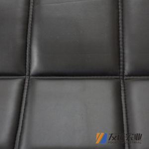 Car Seat Cover and Cushion (PZ-1010) pictures & photos