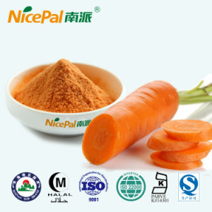 Fresh Carrot Plant Extract Carrot Vegetable Juice Powder From China Factory pictures & photos