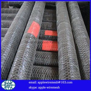 "High Quality Hexagonal Wire Mesh 1/2"" to 3"" pictures & photos"