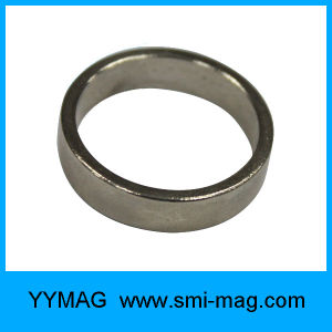 All Kinds of Neodymium Magnets Ring NdFeB pictures & photos