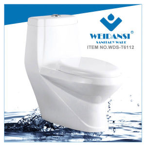 Weidansi Ceramic Wash Down S-Trap One Piece Toilet (WDS-T6112)