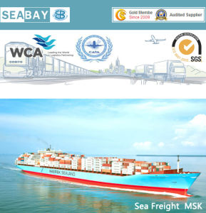 Fast Economic Sea Freight From China to Oakland